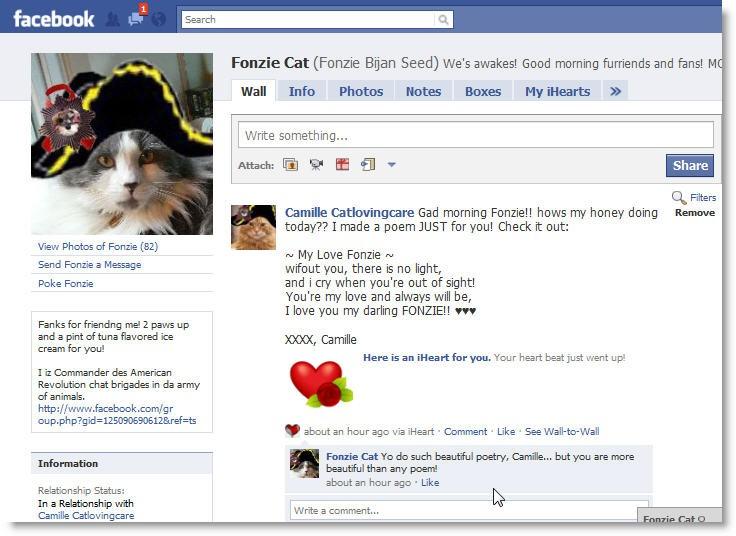 My Sweet CatAffair On FaceBook