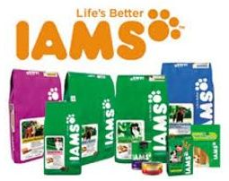 Travelling with your cat - IAMS cat food