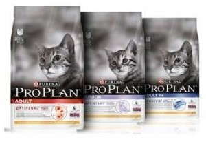 Travelling with cat - Purina cat food