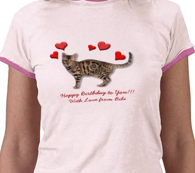 Example Cat T-Shirt for cat lovers!