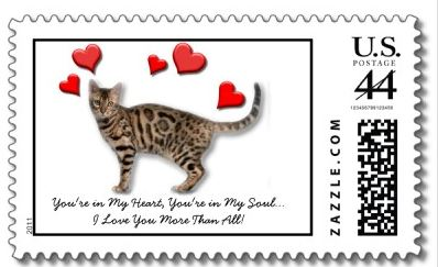 Example of a customized personalized USA postage stamp for cat lovers