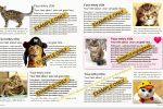 CatLovingCare Cat Book Publications - Sample inner pages of typical cat book