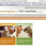 Cat Adoption Classifieds Registration-1