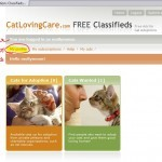 Cat Adoption Classifieds Registration-3